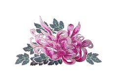 Aster för purpurfärgade rosa färger på vit bakgrund Arkivfoton