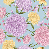 Aster flower blossom pattern. This is vector of flower pattern seamless Stock Photos
