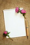 Aster flower buds on a notepad Stock Photos