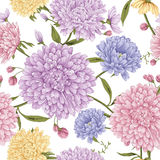 Aster flower  with white background. This is vector of flower pattern seamless Stock Images