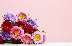 Aster flowers. Autumn festive and party decoration Royalty Free Stock Photos