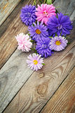Aster flowers bouquet on wooden background Stock Photography