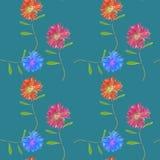Aster, Michaelmas-madeliefje Naadloze patroontextuur van bloemen Bloemenachtergrond, fotocollage royalty-vrije illustratie