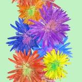 Aster, Michaelmas-madeliefje Naadloze patroontextuur van bloemen FL Royalty-vrije Stock Afbeelding