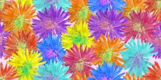 Aster, Michaelmas-madeliefje Naadloze patroontextuur van bloemen FL vector illustratie