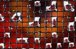 Aster rosso - fiore del gerbera nelle gocce - macro Fotografia Stock Libera da Diritti