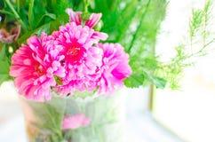 Asterbloemen in een vaas stock fotografie