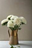 Asteres blancos en jarra rústica imágenes de archivo libres de regalías