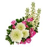 Asters, bird-cherry tree flowers and hawthorn flowers arrangemen Stock Image