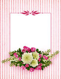Asters, bird-cherry tree flowers and hawthorn flowers arrangement royalty free stock photos