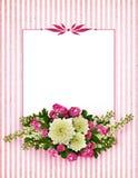 Asters, bird-cherry tree flowers and hawthorn flowers arrangemen Royalty Free Stock Photos