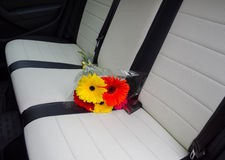 Asters bouquet on car seat Stock Images