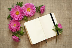 Asters composition and a notepad Stock Photo