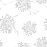 Asters neutral seamless pattern on neutral background Royalty Free Stock Image