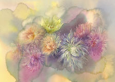 Asters pastel bouquet watercolor. Hand made background Royalty Free Stock Photo