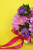 Asters and red bow Stock Photo