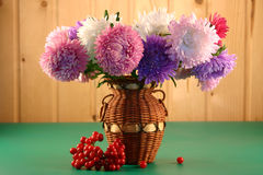 Asters in a vase Royalty Free Stock Photos