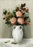 Asters in a white jug Stock Images