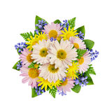 Asters and wild flowers bouquet Royalty Free Stock Photo