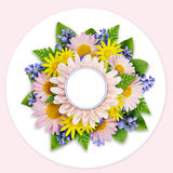 Asters and wild flowers on white background Stock Photos