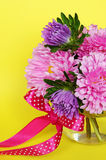 Asters on yellow background Stock Photography