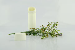 Asthma inhaler and flower of grass. Powder inhaler and flower of grass show asthma stimuli concept from pollen allergy Royalty Free Stock Photo