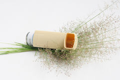 Asthma inhaler and flower grass Royalty Free Stock Photos