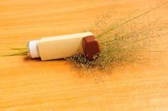Asthma inhaler and grass flower on white background. Asthma inhaler on white background Stock Photos