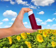 Asthma inhaler in hand. Royalty Free Stock Photo