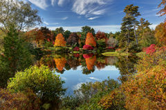 Asticou Azalea Garden. Reflection of fall foliage at Asticou Azalea Garden near Bar Harbor Maine royalty free stock photo