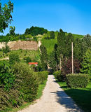 Astigiano, Piedmont, Italy: landscape Royalty Free Stock Photo