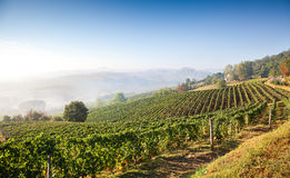 Astigiano ( Piedmont, Italy): landscape Royalty Free Stock Image
