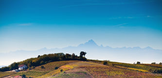 Astigiano, Piemonte, Italia: paesaggio Fotografie Stock Libere da Diritti