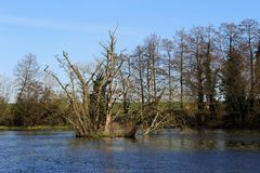 Astley Castle Fishing Pond Stock Photography