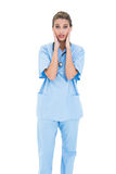 Astonished brown haired nurse in blue scrubs posing with head in hands Royalty Free Stock Photos