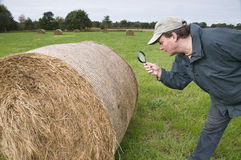 Astonished farmer Royalty Free Stock Images