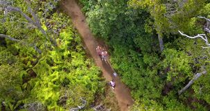 Aerial View of Couple on Kauai Island in Hawaii. Astonishing aerial views of the Kauai island from above with forests jungles, Pacific ocean and Na Pali cliffs stock video