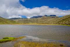 Astonishing Limpiopungo lake, in the National Park Cotopaxi Stock Images
