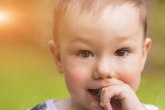Astonishing Portrait of Cute Caucasian Little Boy Royalty Free Stock Images