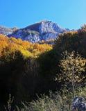 Astonishing view of the mountain Royalty Free Stock Photos