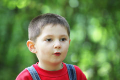 Astonishment facial expression. On little boy face outdoor photo stock images