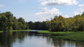 Astor Florida St. Johns River. Beautiful scenery on the St. John's River in Astor Florida in August Stock Photo