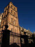 Astorga's Cathedral. (Santiagos Route, Spain royalty free stock photography