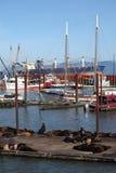 astoria狮子海滨广场码头海运 免版税图库摄影