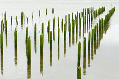 Astoria Piers Royalty Free Stock Photography