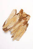 Astragalus root Royalty Free Stock Images
