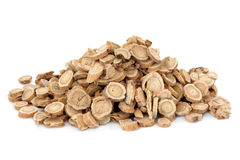 Astragalus Root. Herb used in chinese herbal medicine over white background. Huang qi Stock Photos
