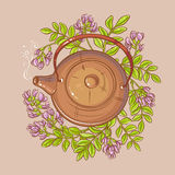 Astragalus tea illustration Stock Photo