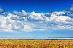 Astrakhan steppe under beautiful sky. Panorama of nature near salt lake Baskunchak royalty free stock photo