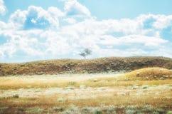 Astrakhan steppe under beautiful sky. Panorama of nature near salt lake Baskunchak royalty free stock images